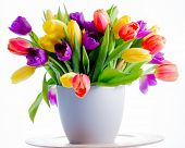 Spring flowers,  tulips - Colorful fresh spring tulips flowers in vase