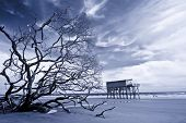 infrared shot of house on stilts standing alone after storm