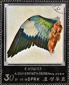 A stamp printed in North Korea shows wing of a bird by Albrecht D�rer
