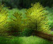 Garden Premade Background