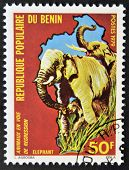 stamp printed in Benin shows elephant