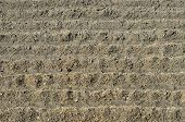 Detail furrows of land in a freshly plowed field