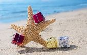 Starfish With Gifts By The Ocean
