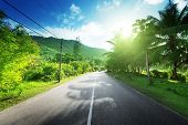 empty road in jungle of Seychelles islands