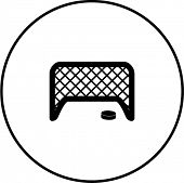 hockey puck and net