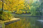 Autumn Landscape On The City Channel In Riga