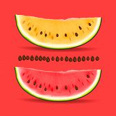 Slice of nice fresh yellow and red watermelon