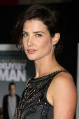 LOS ANGELES - NOV 3:  Cobie Smulders at the
