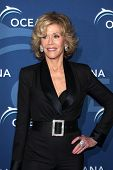 LOS ANGELES - OCT 30:  Jane Fonda at the Oceana's Partners Awards Gala 2013 at Beverly Wilshire Hote