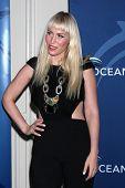 LOS ANGELES - OCT 30:  Natasha Bedingfield at the Oceana's Partners Awards Gala 2013 at Beverly Wilshire Hotel on October 30, 2013 in Beverly Hills, CA
