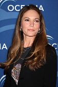 LOS ANGELES - OCT 30:  Diane Lane at the Oceana's Partners Awards Gala 2013 at Beverly Wilshire Hote