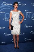 LOS ANGELES - OCT 30:  Cobie Smulders at the Oceana's Partners Awards Gala 2013 at Beverly Wilshire