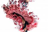 image of gypsy  - Feet detail of Flamenco dancer in beautiful dress on white background
