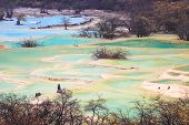 Beautiful Travertine Ponds In Huanglong