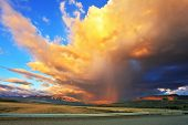 Summer rain. Improbably beautiful huge cumulonimbus cloud is shined with the sunset sun. The cloud h