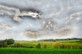 Hdr Nature Panorama