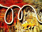 Alphabet Letter M Rustic Rope