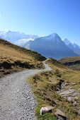hiking trails leading to Jungfrau Swiss Alps
