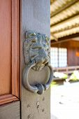 Lion Door Knocker Or Door Knob