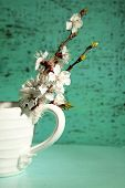 Beautiful apricot blossom in cup on old wooden background