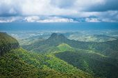 Subtropical rainforest and mountains in Springbrook national park, Queensland, Australia