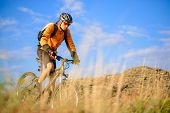 image of exercise bike  - Cyclist Riding the Bike on the Beautiful Autumn Mountain Trail - JPG