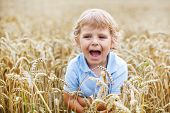 Preschool Boy Of 3 Having Fun In Wheat Field In Summer