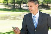 Mature businessman text messaging through cellphone in park