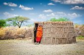 TANZANIA, AFRICA-FEBRUARY 9, 2014: Masai with traditional  hut, review of daily life of local people