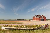 Flowerbed and building on Atlantic shore in North Rustico, Prince Edward Island, Canada.
