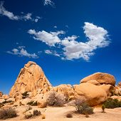 Joshua Tree National Park Intersection rock in Mohave desert California USA