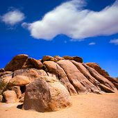 rocks in Joshua tree National Park California USA
