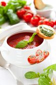Tomato soup with basil pesto