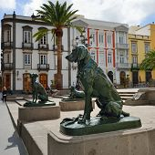 Dogs Symbol Of Canary Islands