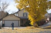 picture of cottonwood  - A senior man rakes fallen golden cottonwood leaves in front of a typical suburban home in Grand Junction - JPG