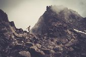 Woman hiker walking in a mountains