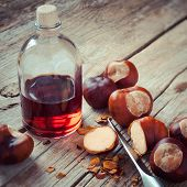 Chestnuts, Knife And Bottle With Tincture On Wooden Table, Herbal Medicine
