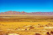 Eastern Nevada Landscape