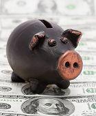 Money And Black Piggy Bank
