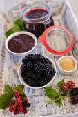 Постер, плакат: Blackberry jam freshly homemade blackberry jam