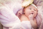 Beautiful Newborn Baby Girl Laying Peacefully in Soft Pink Blanket.