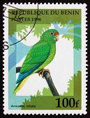 Postage Stamp Benin 1996 Puerto Rican Amazon, Bird