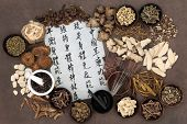 Chinese herbal medicine with acupuncture needles and asian script. Translation describes chinese herbal medicine as increasing the bodys ability to maintain body and spirit health and balance energy.