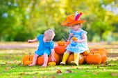 foto of baby cowboy  - Happy children at pumpkin patch during Halloween little girl in a blue dress boots and cowboy hat and baby boy having fun together trick or treating on a sunny autumn day