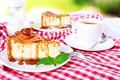 Cheese cake  in plate on red tablecloth on nature background