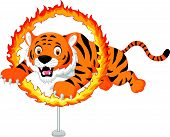 Cartoon tiger jumps through ring of fire