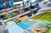 stock photo of production  - Close up of an offset printing machine during production - JPG