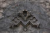 Old monogram M overgrown with climbing plants at the 19th century building in Berlin, Germany.