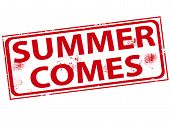 Summer Comes Stamp