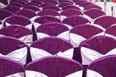 Festive Chairs With Purple Cloth Covering
